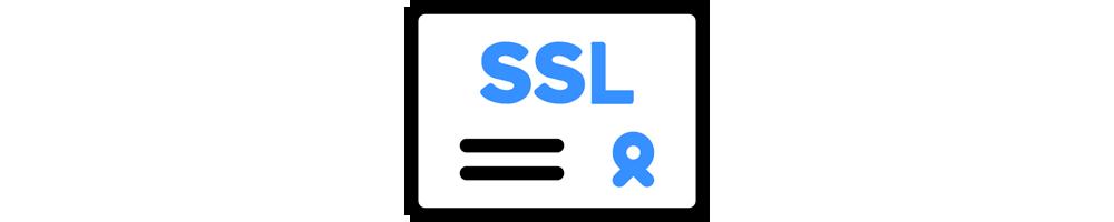 SSL standard (1 site)